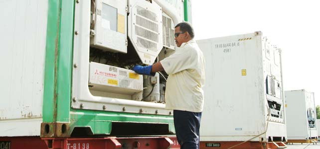 Refrigerated Transportation & Distribution